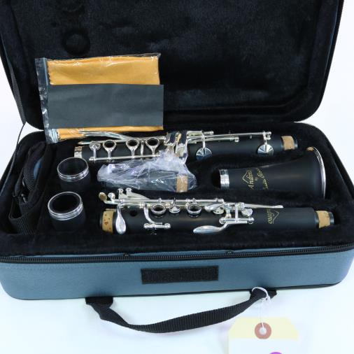 Andino by Luis Rossi Student Plastic Clarinet BRAND NEW